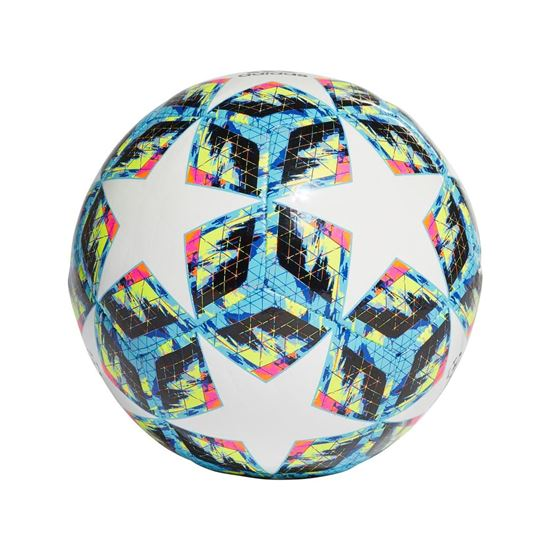 Picture of Finale Sala 5x5 Ball