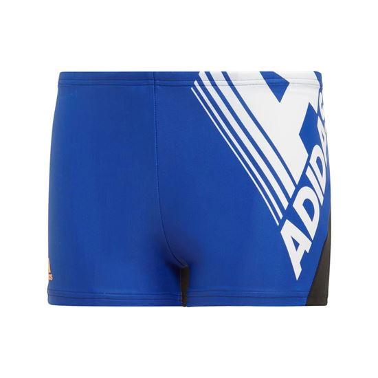 Picture of Fitness Logo Swim Boxers