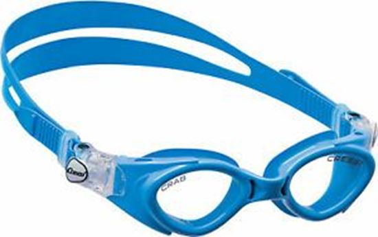Picture of Crab Goggles