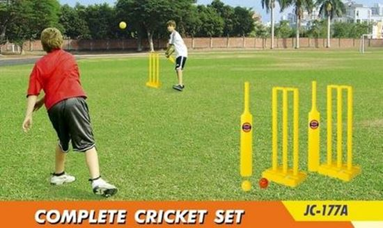 Picture of Complete Cricket Set