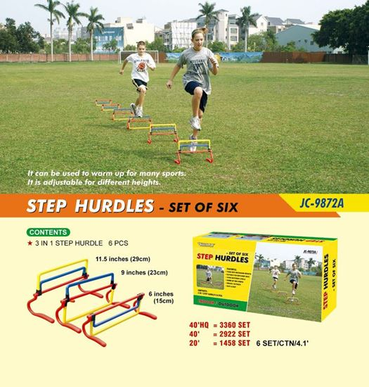 Picture of Step Hurdles Set Six