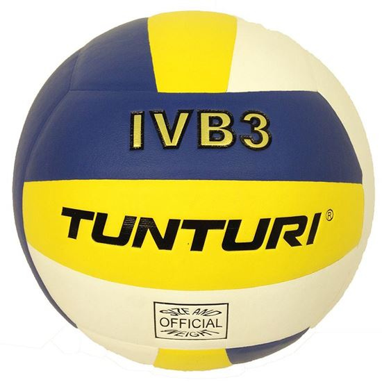 Picture of Volleyball Ivb3