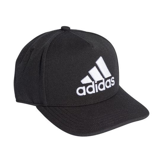Picture of H90 Logo Cap
