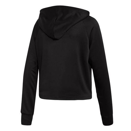 Picture of Hoodie and Tights Track Suit