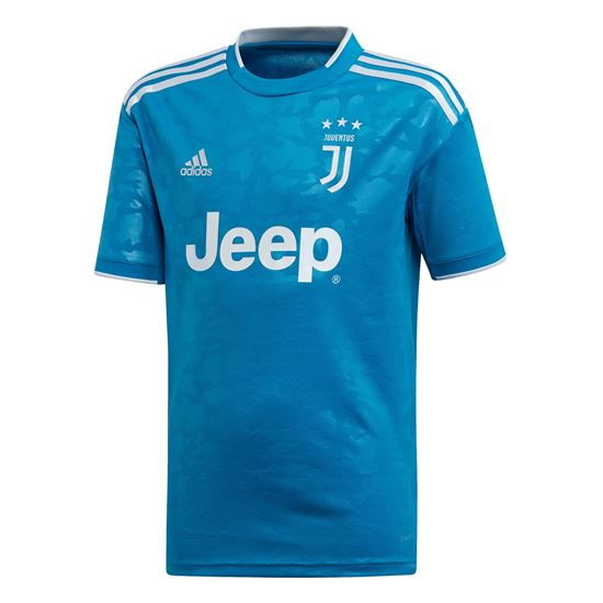 Picture of Juventus Third Jersey