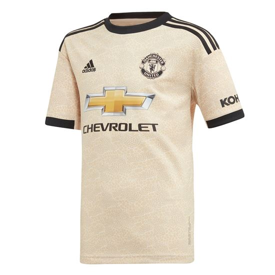 Picture of Manchester United Away Jersey