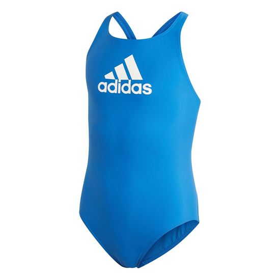 Picture of Badge of Sport Swimsuit