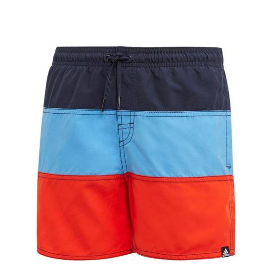 Picture of Colorblock Swim Shorts