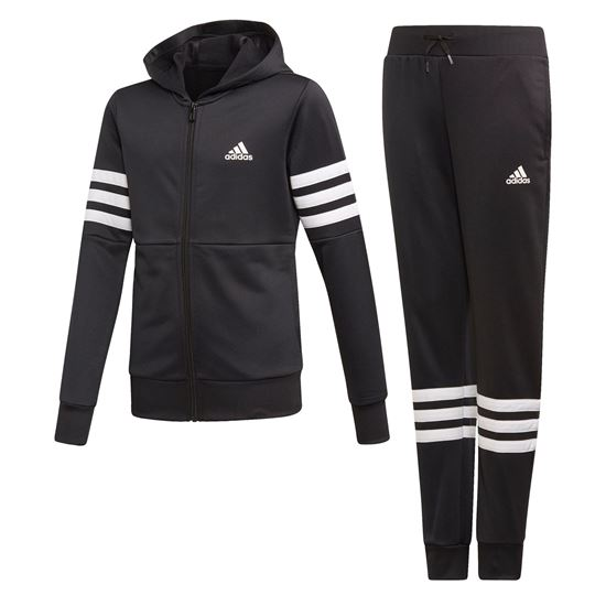 Picture of Hooded Track Suit