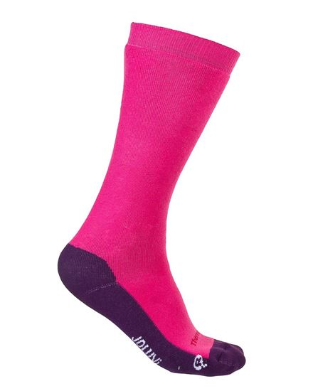 Picture of Thermolite Classic Socks 2P