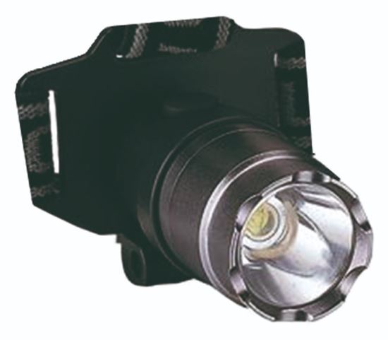 Picture of Alu 1 Cree