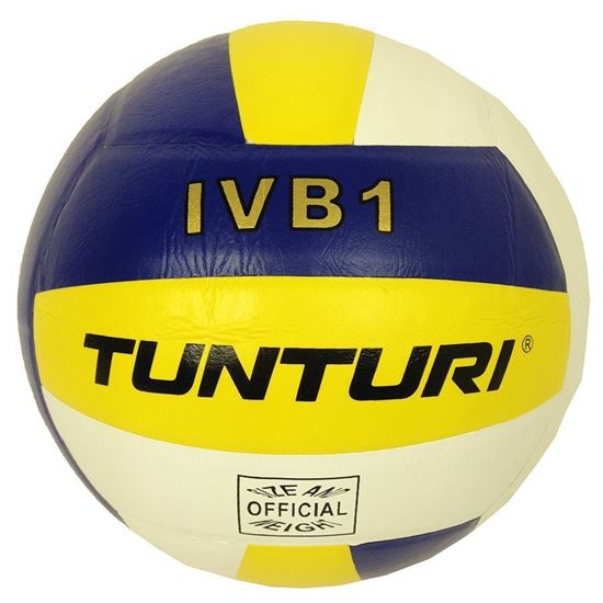 Picture of Volleyball Ivb1