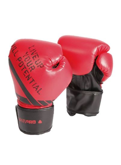 Picture of Sparring Gloves