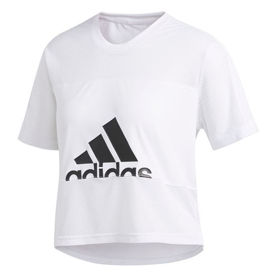 Picture of Bos Mesh Tee