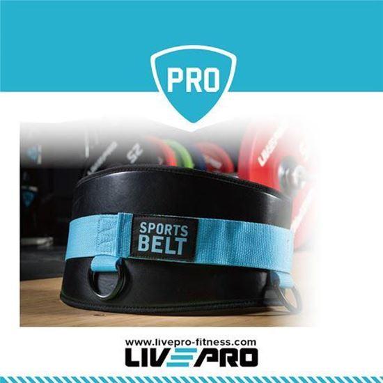 Picture of Dip Belt
