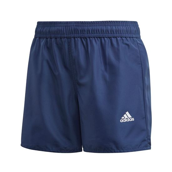 Picture of Yb Bos Shorts