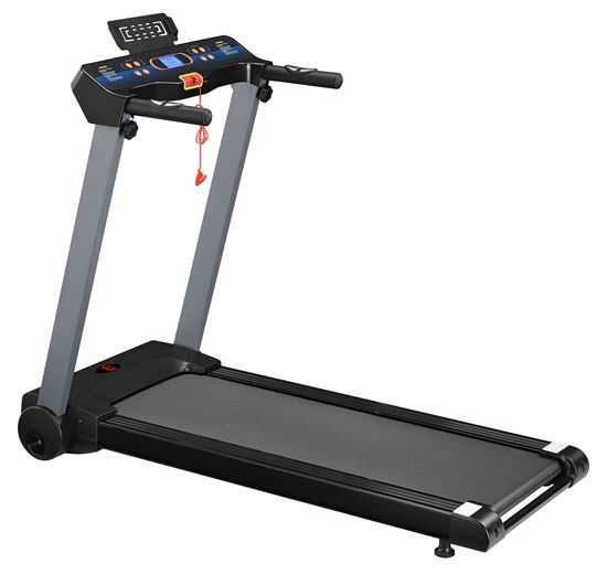 Picture of Motorized Treadmill