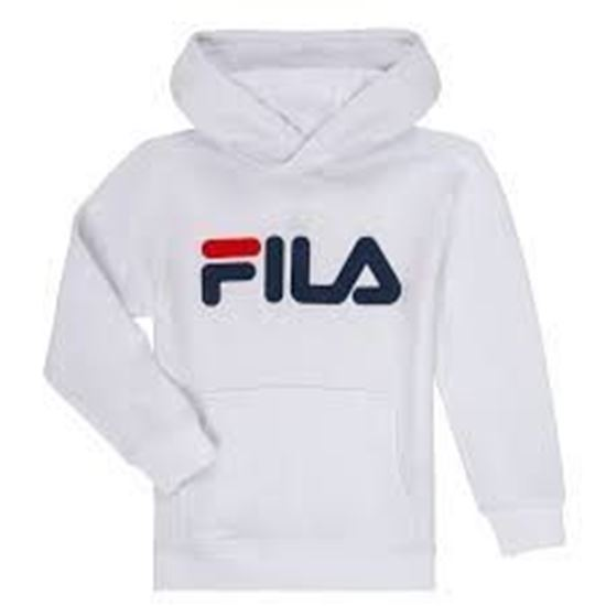 Picture of Classic Logo Hoody