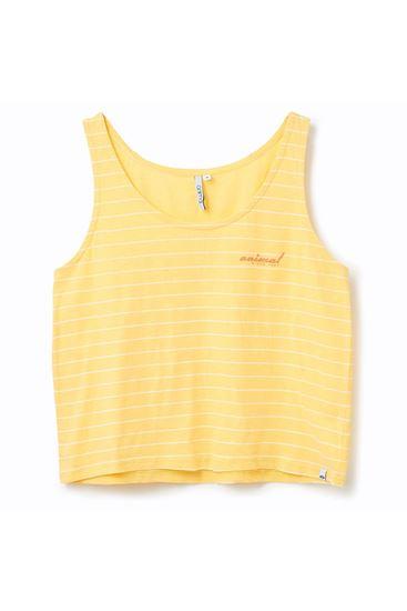 Picture of Cheerleader Vest
