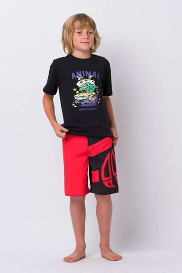 Picture of Layka Boardshort