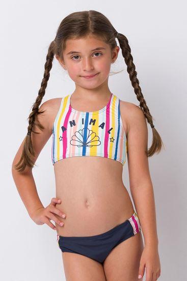 Picture of Spectrum Bikini