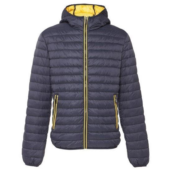 Picture of Padded Jacket With Hood