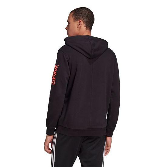Picture of Fstv Hoody
