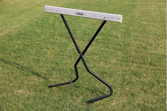 Picture of Scissors Hurdle