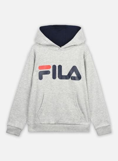 Picture of ANDREA CLASSIC LOGO HOODY
