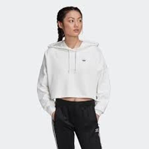 Picture of BB CP HOODIE
