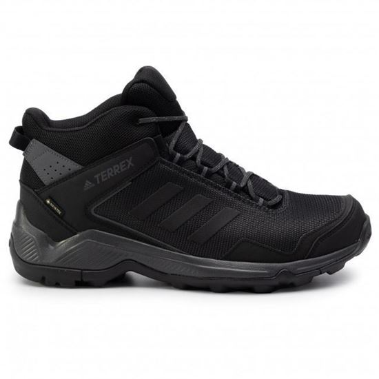 Picture of TERREX EASTRAIL MID GTX