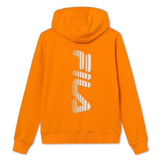 Picture of ALIAR HOODY