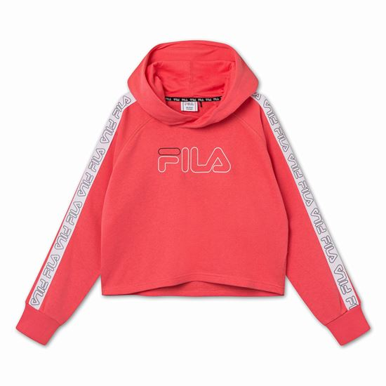 Picture of JULICA TAPED CROPPED HOODY