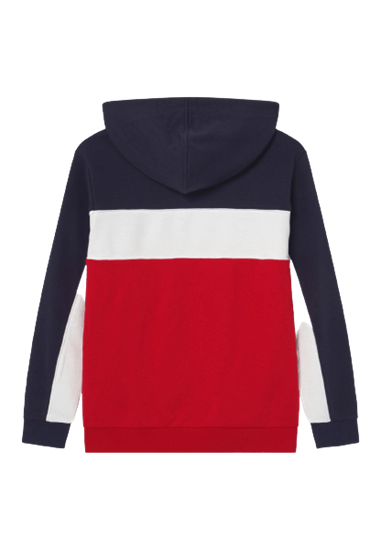 Picture of LEVI BASIC BLOCKED HOODY