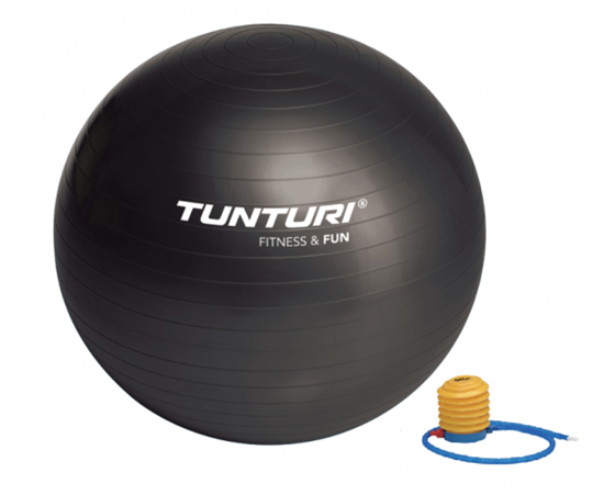 Picture of GYMBALL ANTI BURST