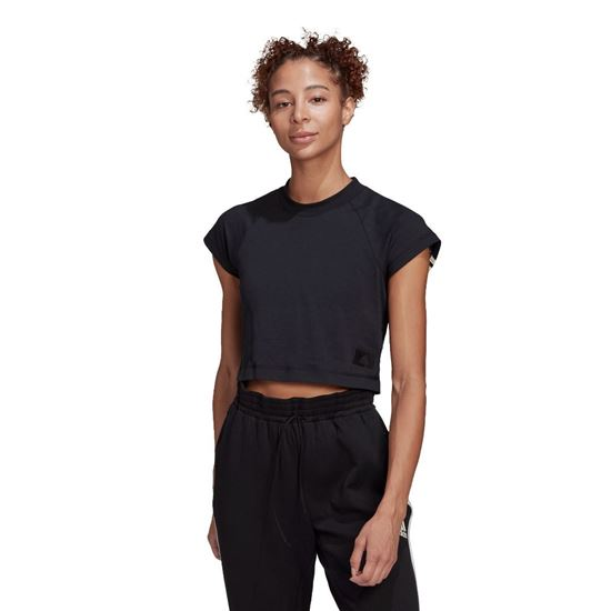 Picture of W RECCO CROPTEE