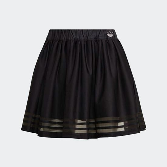 Picture of SKIRT