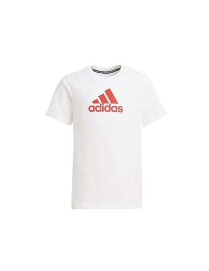 Picture of B BOS TEE