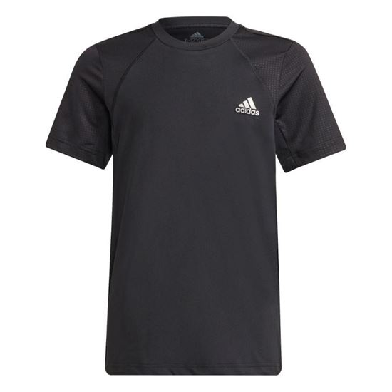 Picture of B XFG AR TEE